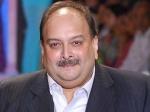 रद्द होगी मेहुल चोकसी की नागरिकता, जल्द भेजा जाएगा भारत