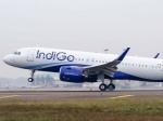 इंडिगो का मुनाफा 43 गुना बढ़कर 1203 करोड़ रहा