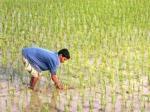 किसानों के लिए आ सकती है खास योजना