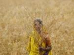 किसानों को तोहफा : पीएम किसान योजना के लिए खुद करें रजिस्ट्रेशन