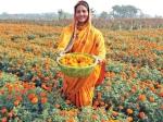 फूलों की खेती : जानें कैसे बदल गई इन महिलाओं की जिंदगी