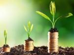 निवेश आइडिया : इन 3 सरकारी कंपनियों के शेयर बना सकते हैं अमीर