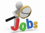 खुशखबरी नवंबर में 19 लाख लोगों को मिली नौकरी