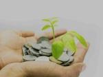 म्युचुअल फंड : बिना डीमैट अकाउंट के कैसे करें निवेश
