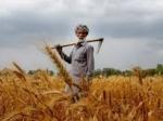 पीएम किसान : आज 1 साल पूरा, किसानों को मिल चुका है 51 हजार करोड़ रुपये