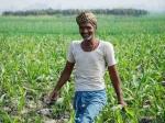 PM Kisan की तर्ज पर शुरू हुई नयी योजना, अब किसानों को मिलेंगे 10 हजार रु