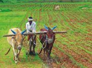 अभी किसानों का कर्ज माफ नहीं करेगी उत्तराखंड की BJP सरकार!