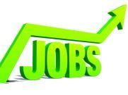अक्टूबर-मार्च में भारत में बढ़ेगा रोजगार, यहाँ होंगे मौके