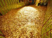 भारत में मिली सोने की खान