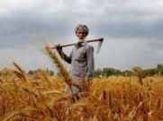 पीएम किसान : आज 1 साल पूरा, बंट चुका है 51 हजार करोड़ रुपये