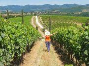 Corona के चलते इस देश के लोग खेती से कमा रहे पैसा
