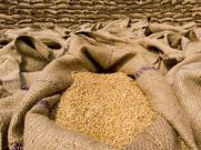 गरीब कल्याण अन्न योजना : बिना राशन कार्ड मिलता है फ्री अनाज