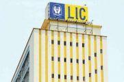 LIC ने दिया बड़ा मौका, दोबारा शुरू करें बंद बीमा पॉलिसियां