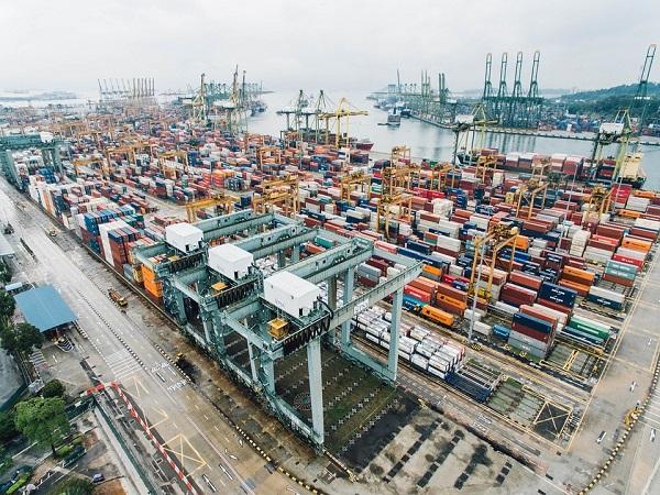 अगस्त में देश का निर्यात 19.21% बढ़कर 27.84 अरब डॉलर पर पहुंचा