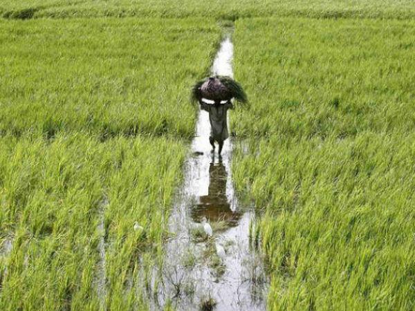 किसानों को 3 लाख तक ब्याज मुक्त कर्ज का मिलेगा लाभ
