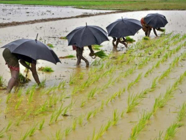 सामान्य Monsoon की खबर से लुढ़के खाने-पीने की चीजों के दाम