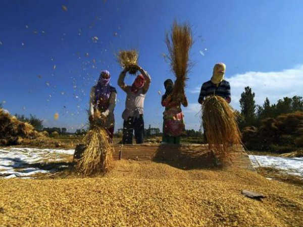 किसान 100 रुपये महीना देकर पाएंगे 3000 रुपये की पेंशन, ये है योजना