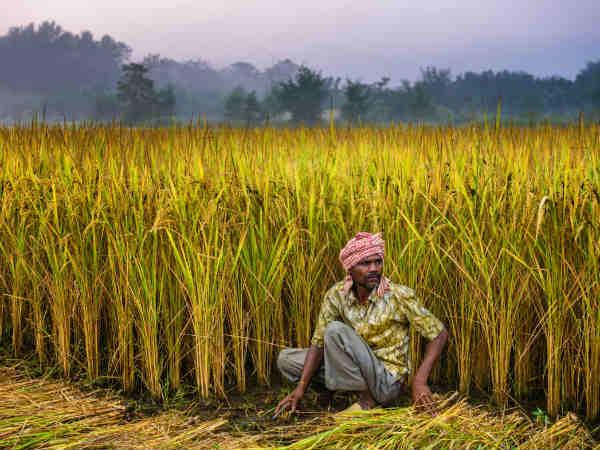पीएम किसान : 6 करोड़ किसानों को पैसा मिलने का रास्ता साफ