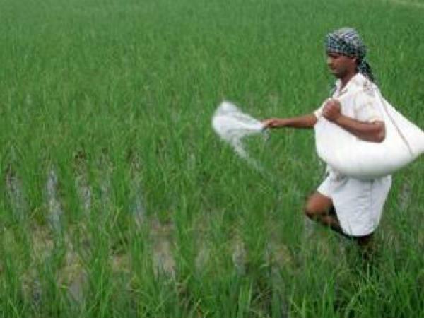 मोदी सरकार: किसानों को मिट्टी की जरुरत के अनुसार मिलेगा उर्वरक