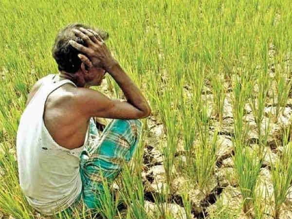 पीएम किसान : बचे 7 करोड़ लोग ऐसे पाएं पैसा, आसान है तरीका