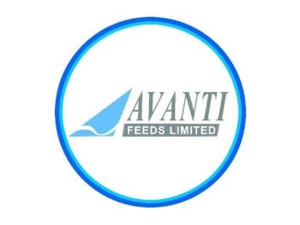Avanti Feeds : 1000 रु को बना दिया सवा लाख, जानें आगे क्या होगा