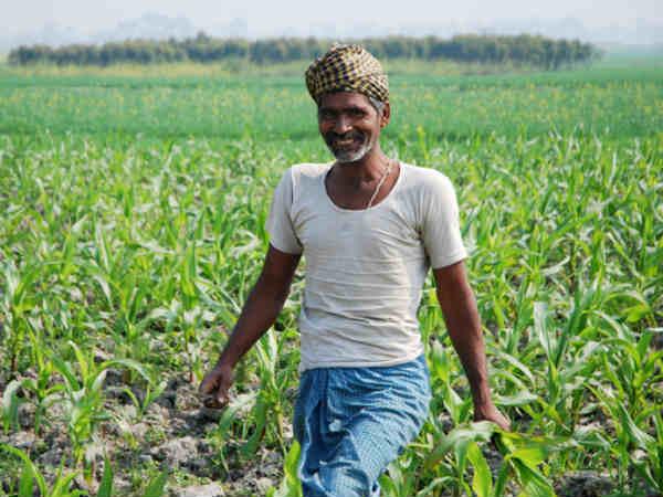 किसानों के लिए राहत की खबर, सरकार ने MSP बढ़ाने का लिया फैसला