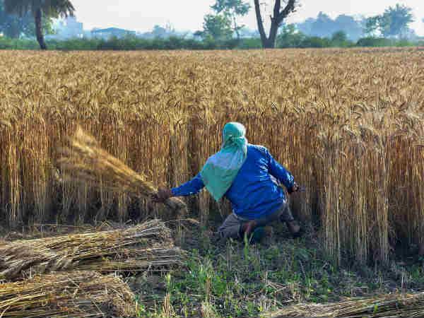 किसानों को सरकार से मिलेंगे 10 लाख रु, जानिए कौन ले सकेगा फायदा