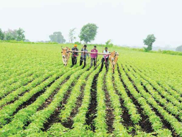 ही पंतप्रधान किसान योजना आहे