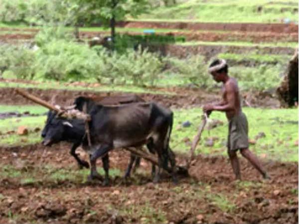 पश्चिम बंगालच्या शेतक्यांनाही पैसे मिळू लागले