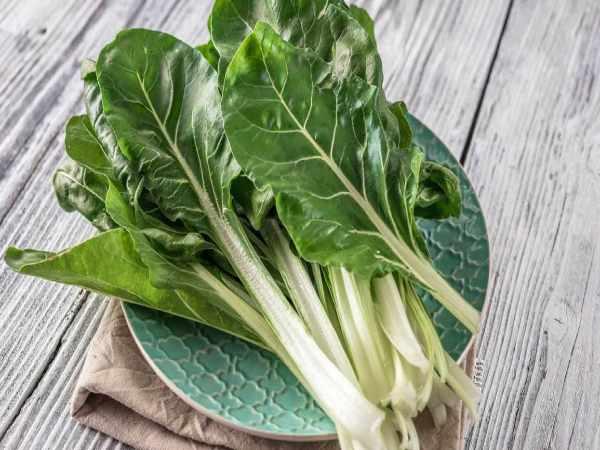 4 विदेशी सब्जियां बना सकती हैं आपको अमीर, फाइव स्टार होटलों में रहती है डिमांड