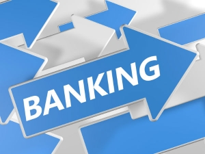Government Can Reduce The Number Banks