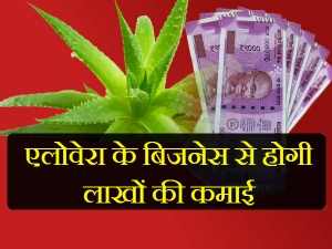 How Start Aloe Vera Farming India
