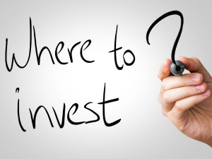 How Many Places Can Salaried Individuals Investment