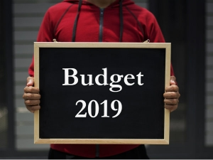 Budget 2019 Expectations Business From Budget What Can Get F