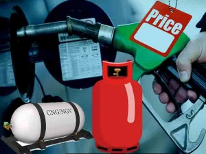 How I Know Petrol Diesel Cng Lpg Rates Every City Hindi