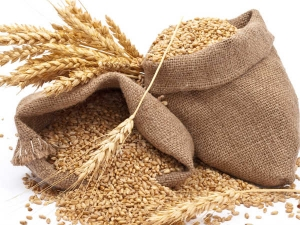 Government Increases Import Duty On Wheat 40 Percent