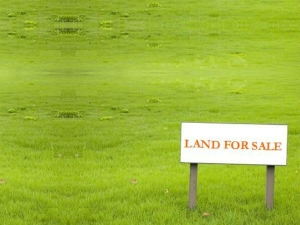 You Must Know This Before Buying Land