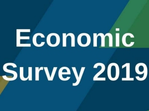 Reaction On Economic Survey 2019