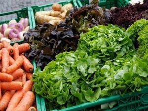 Wholesale Price Index Falls August