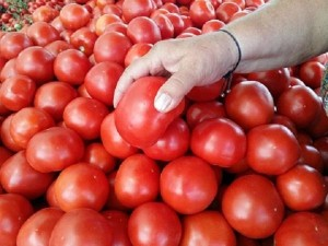Tomato Price Touched 300rs Kg In Pakistan