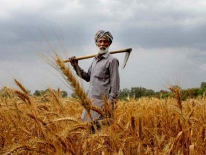 Amit Shah Hoped To End The Country Recession By Having A Good Crop After Good Rains