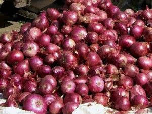 Turkey Stops Onion Exports Onion Prices May Rise Again In India