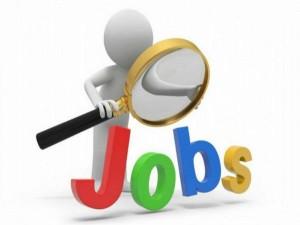 Good News 19 Lakh People Got Jobs In November