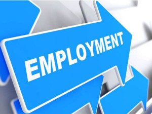 Good News People Getting Work Employment Rate Reached Above 35 Percent