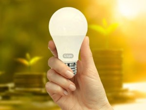 Eesl Will Distribute 4 Led Bulbs For 10 Rupees In The Village
