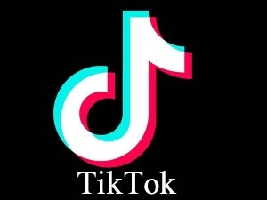 India Can Make An App Like Tiktok But The Challenge Of Creating A Business Model