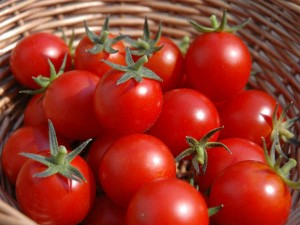 Tomatoes Reached Close To 100 In A Month