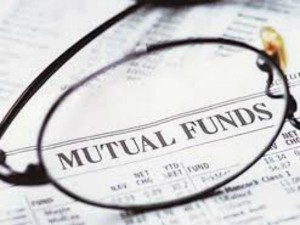 Top 5 Small Cap Mutual Fund Schemes Offering Best Returns In The Year