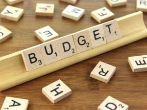 Budget 2021 Highlight Who Got What Know All The Big Announcements