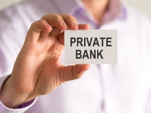 Important Announcement Of Fm Private Banks Will Be Able To Participate In Government Business